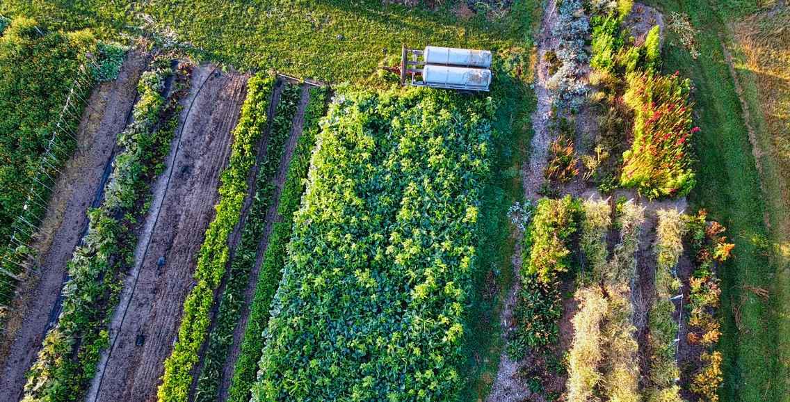 Für eine florierende regionale Landwirtschaft: